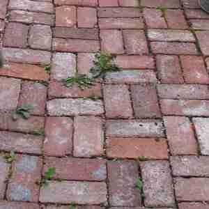 used bricks path